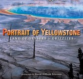 Portrait of Yellowstone