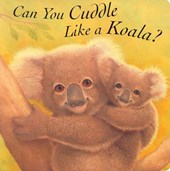 Can You Cuddle Like a Koala