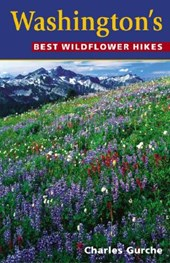 Washington's Best Wildflower Hikes