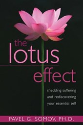 The Lotus Effect