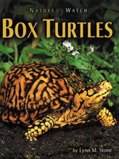 Box Turtles | Lynn M. Stone |