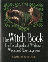 The Witch Book | Raymond Buckland |