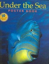 Under the Sea Poster Book | Editors of Storey Publishing |