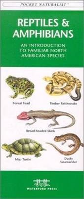 Reptiles and Amphibians | James Kavanagh |