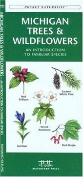 Michigan Trees & Wildflowers