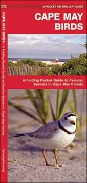 Cape May Birds