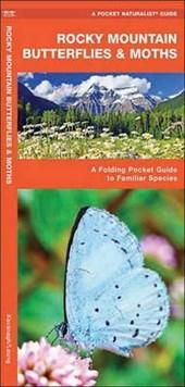 Rocky Mountain Butterflies & Moths