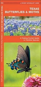 Texas Butterflies & Moths
