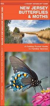 New Jersey Butterflies & Moths