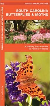 South Carolina Butterflies & Moths