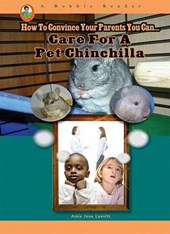 Care for a Pet Chinchilla