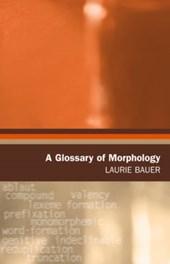 A Glossary Of Morphology
