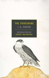 The Peregrine | J. A. Baker |