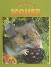 Caring for Your Mouse