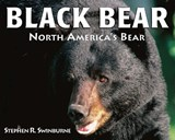 Black Bear | Stephen R. Swinburne |