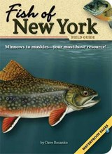 Fish of New York Field Guide | Dave Bosanko |