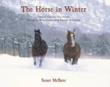 The Horse in Winter | Susan McBane |