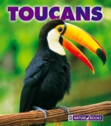 Toucans | Mary Ann McDonald |