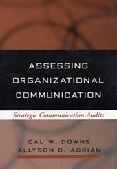 Assessing Organizational Communication