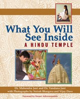 What You Will See Inside a Hindu Temple | Mehendra Jania |