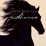 Happiness is a Horse | Christiane Slawik |
