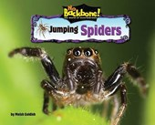 Jumping Spiders | Meish Goldish |