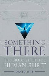 Something There | David Hay |
