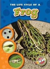 The Life Cycle of a Frog | Colleen Sexton |