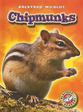 Chipmunks | Derek Zobel |