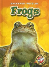 Frogs | Emily Green |