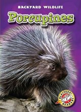 Porcupines | Emily K Green |