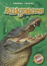 Alligators | Derek Zobel |