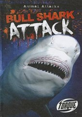 Bull Shark Attack