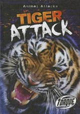 Tiger Attack | Lisa Owings |