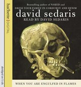 When You Are Engulfed in Flames | David Sedaris |