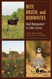 Beef, Brush, and Bobwhites | Hernandez, Fidel ; Guthery, Fred S. |