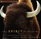 The Spirit of Healing | Lewis Mehl-Madrona |