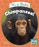 It's a Baby Chimpanzee! | Kelly Doudna |