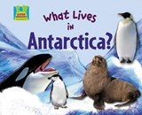 What Lives in Antarctica? | Oona Gaarder-Juntti |