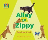 Alley to Zippy