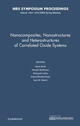 Nanocomposites, Nanostructures and Heterostructures of Correlated Oxide Systems | Tamio Endo |