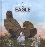 The eagle. Animals in the wild | Renne |