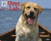 12 Uses for a Lab