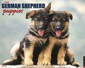 Just German Shepherd Puppies