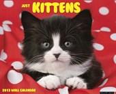 Just Kittens