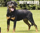 Just Rottweilers |  |
