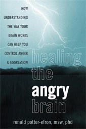 Healing the Angry Brain | Potter-Efron, Ronald, Ph.D. |