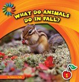 What Do Animals Do in Fall? | Rebecca Felix |