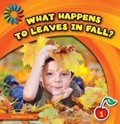 What Happens To Leaves In Fall?