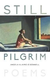 Still Pilgrim